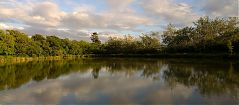 Panoramic view of Blagdon Farm Fishing Lake in early June